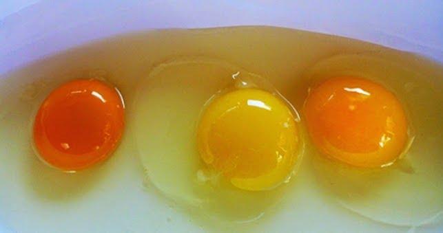 لماذا يجب على الرجال تناول صفار البيض بانتظام ؟!