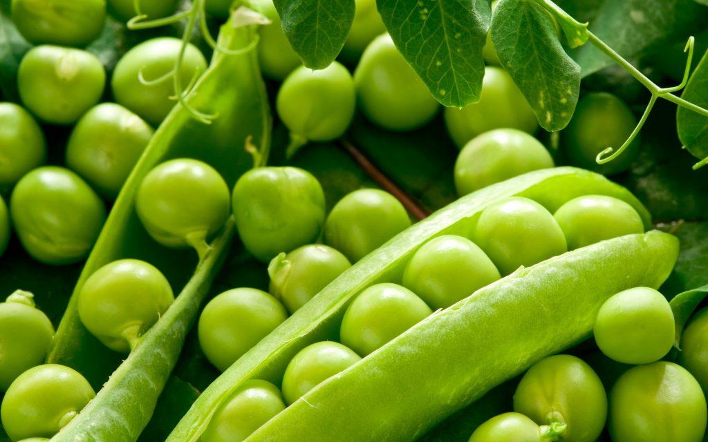 10 فوائد مذهلة ستجعلك تتناول البازلاء الخضراء يومياً