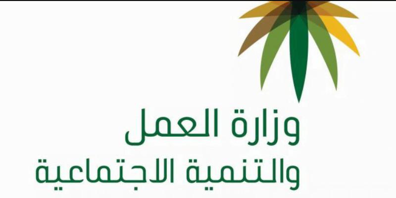 وزارة العمل بالقنفذة تنفذ حمله تفتيشيه بمحافظة العرضيات