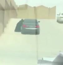 شرطة الرياض تضبط شاباً ظهر في مقطع غير أخلاقي مع طالبة بالرياض