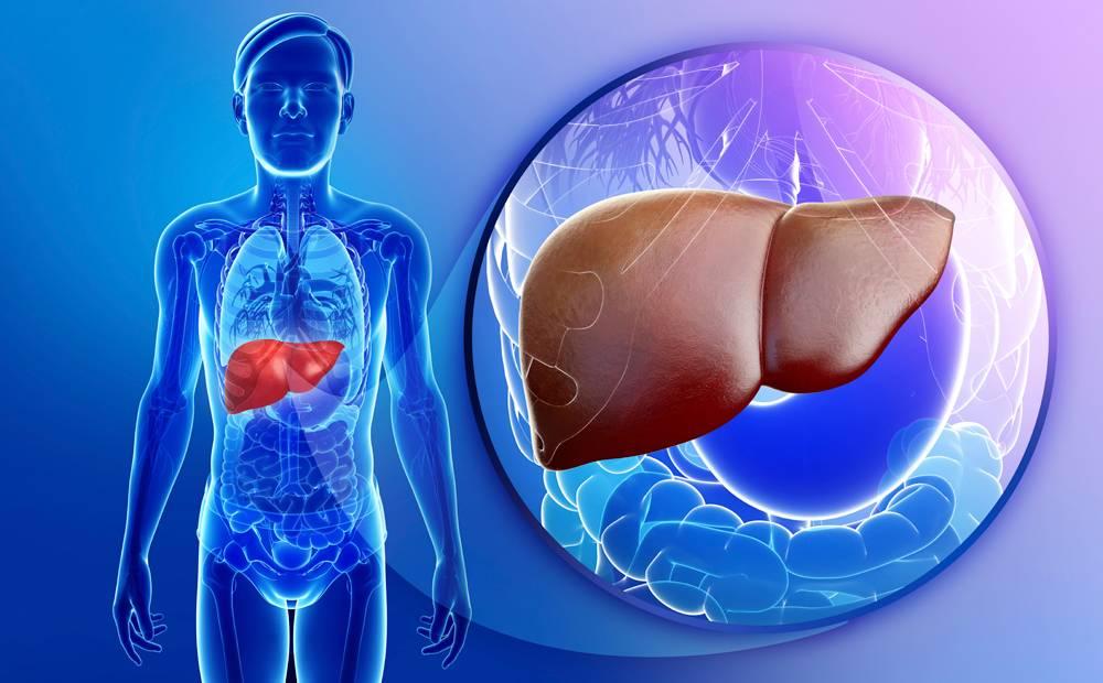 دواء جديد يعالج أكثر أمراض الكبد شيوعا حول العالم