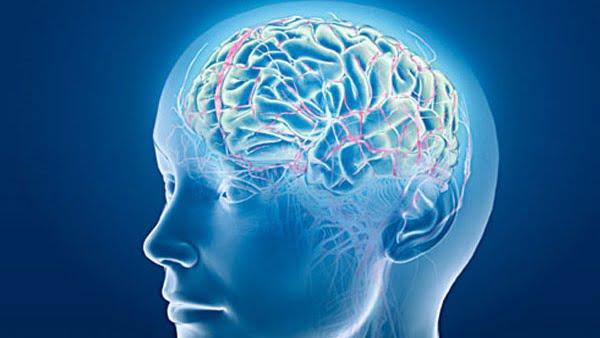 هل تعلم أن هناك صلة بين التوتر النفسي وأمراض القلب ؟!  تعرف على التفاصيل