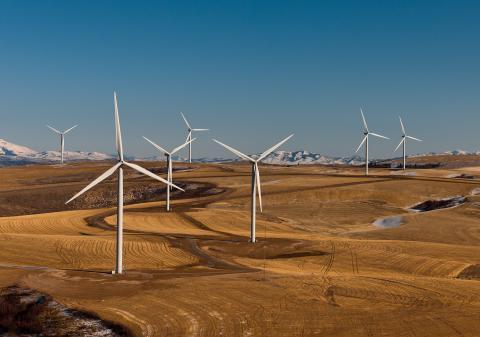 وزارة الطاقة: تأهل 25 شركة لمشروع دومة الجندل لطاقة الرياح