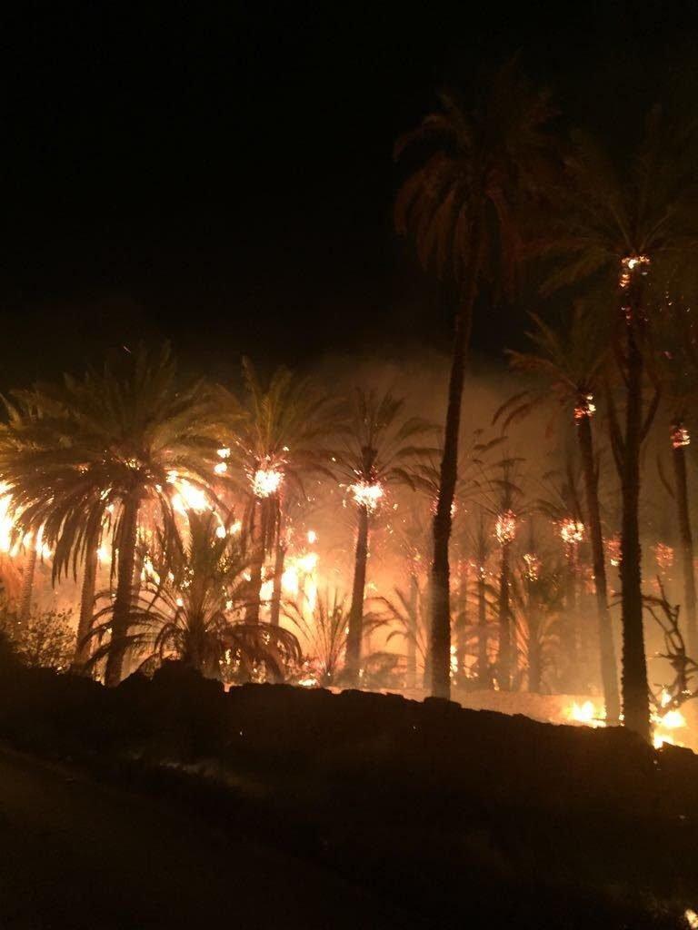 """""""حريق"""" يلتهم 6 مزارع في دومة الجندل .. والدفاع المدني يرجح """"شبهة جنائية"""""""