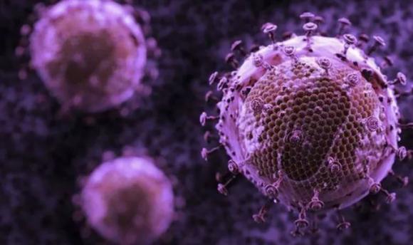 تطوير أجسام مضادة للقضاء على 99% من سلالات فيروس الإيدز