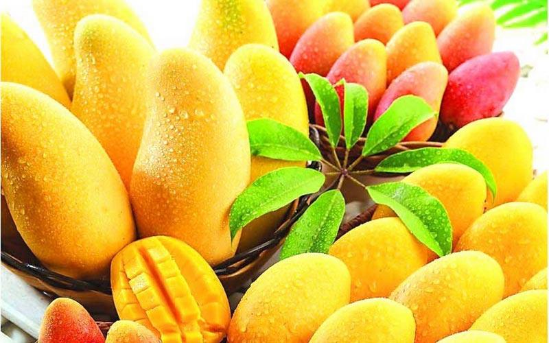 حبة مانجو يوميا تمنع أمراض القلب والسكر