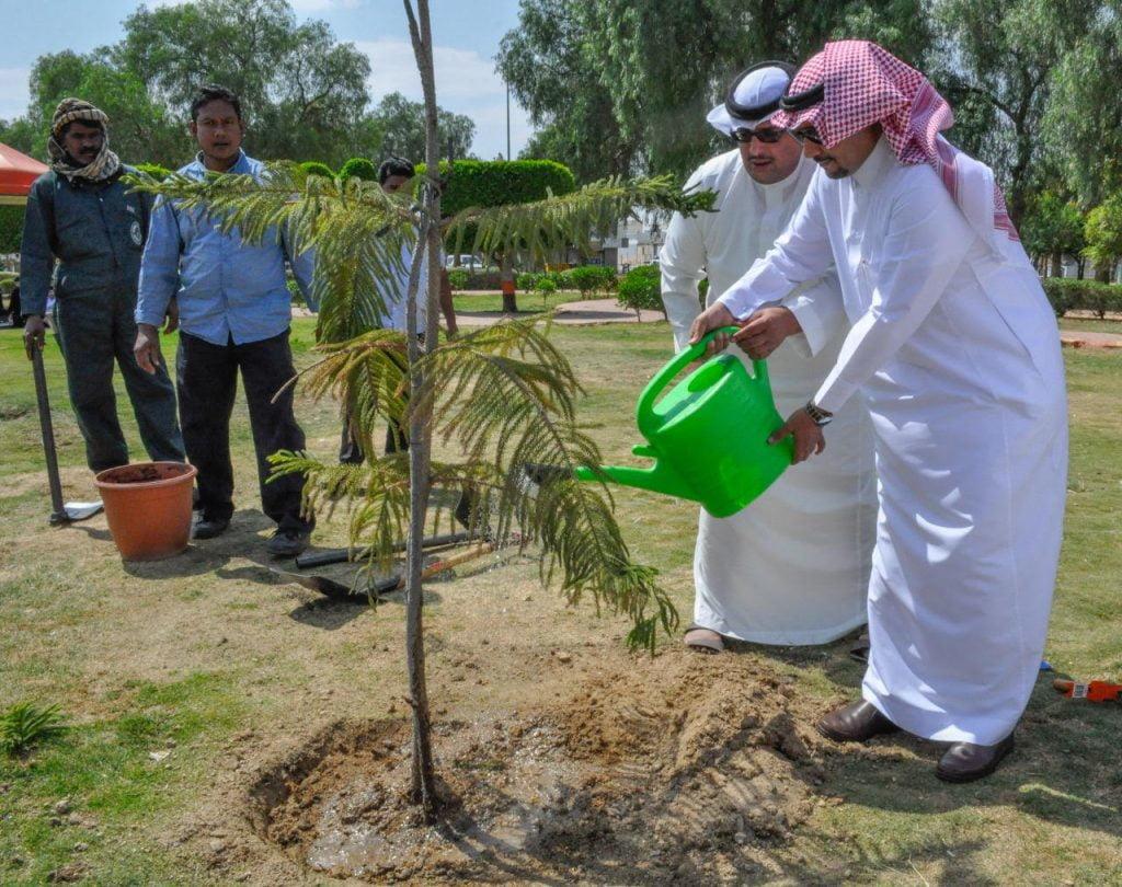 تدشين حملة زراعة مليون شجرة في محافظة خميس مشيط