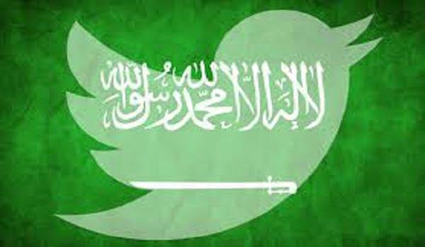 قرقاش: قطر فشلت رغم إنفاقها الأسطوري على الإعلام.. التويتر السعودي أكثر تأثيرا