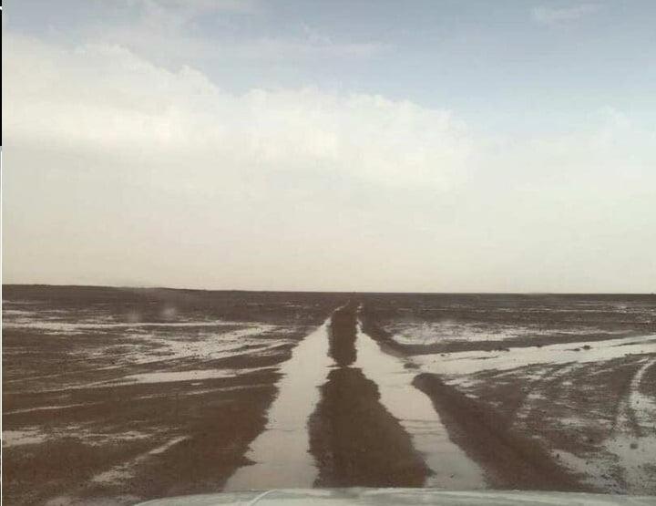 بالفيديو والصور .. أمطار رفحاء