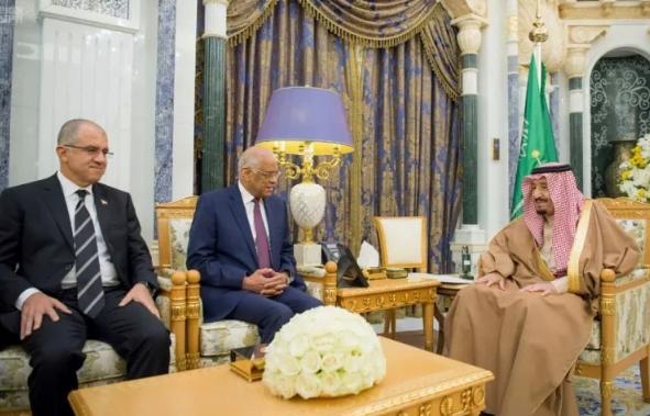 الملك يبحث مع رئيس مجلس النواب المصري مجالات التعاون في المجال البرلماني