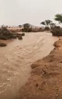 بالفيديو أمطار متفرقة على العاصمة الرياض وأجزاء متفرقة من محافظات المنطقة