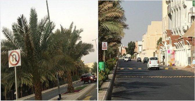المرور: إغلاق جزئي لطريق سلطانة الطالع بالمدينة المنورة لمدة 60 يومًا