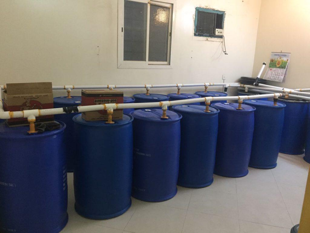 ضبط مصنع خمر بالرياض و إتلاف 14020 لترا جاهزة للترويج