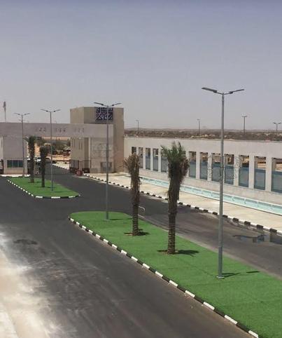 """غدا…ضمن حملة أزرع تؤجر  """"زراعة ٥٠٠٠ شجرة في  سوق عكاظ"""""""