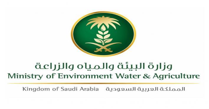 البيئة تفشي فيروس كورونا الجديد له صلة وثيقة بالحيوانات الفطرية صحيفة المناطق السعوديةصحيفة المناطق السعودية