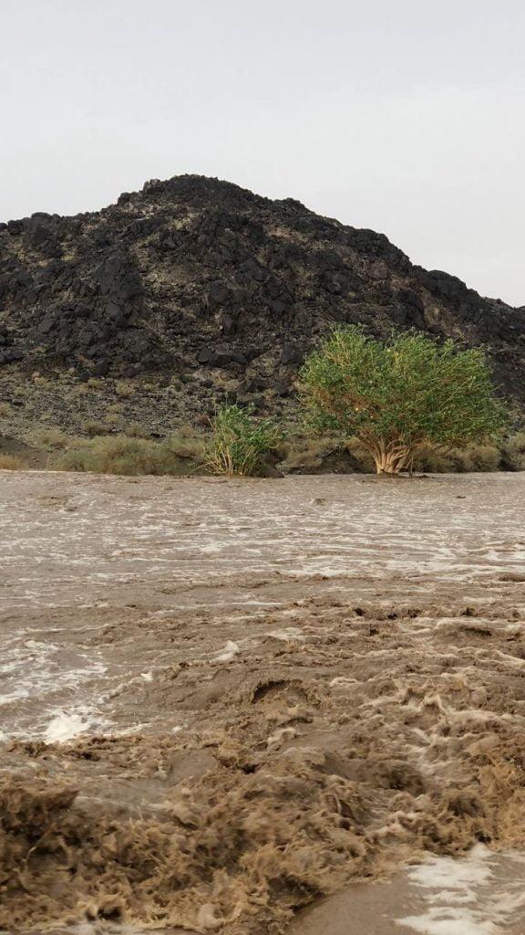 بالفيديو: أمطار منطقة عسير اليوم الخميس