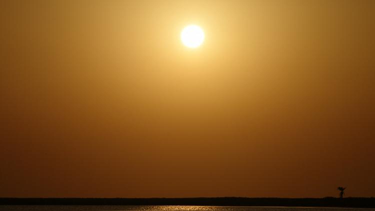 الحرارة تتجاوز 51 درجة مئوية في الإمارات!