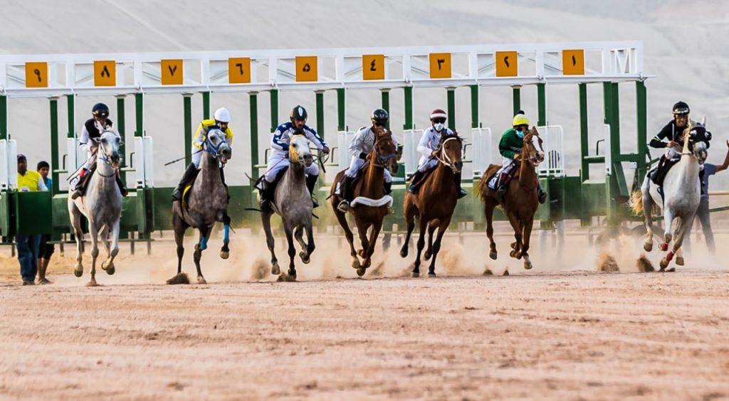 انطلاق سباق السرعة للخيل العربية الأصيلة الثاني على كأس محافظة العقيق غداً الثلاثاء