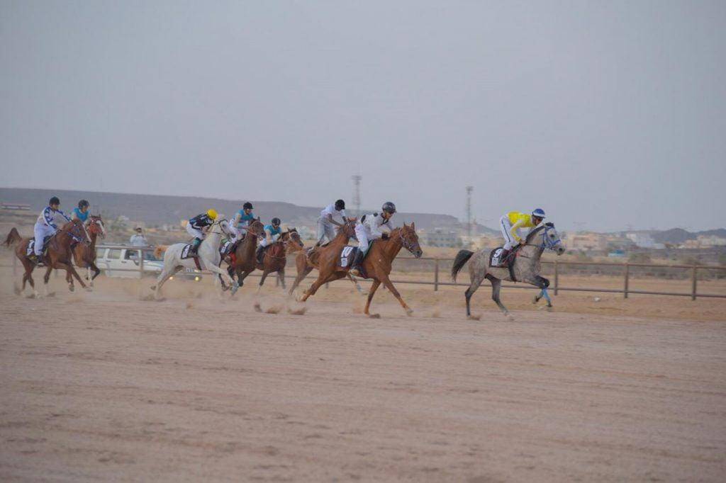 انطلاق سباق السرعة للخيل العربية الأصيلة الثالث على كأس إمارة الباحة غداً الأربعاء