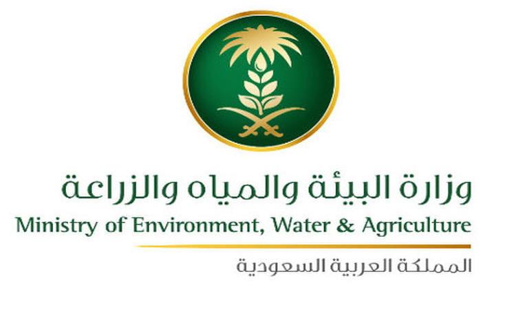 """""""البيئة"""" تدشن المرحلة الثالثة من حملة """"أرض القصيم خضراء"""" الأحد القادم"""