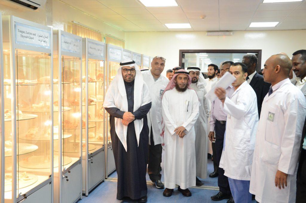 كلية الطب بجامعة الملك خالد تنظم معرض التشريح الأول صحيفة المناطق السعوديةصحيفة المناطق السعودية