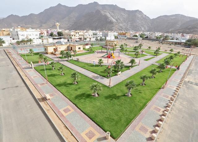 أمانة العاصمة المقدسة تواصل جاهزية شبكة الطرق وتزرع النباتات في الحدائق العامة