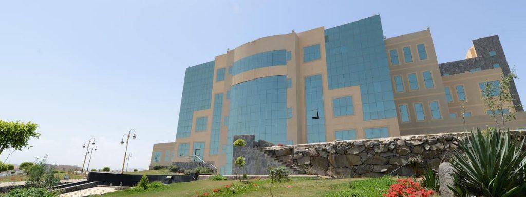 بناء وإدارة فرق المبادرات التنفيذية.. ورشة تدريبية بجامعة الملك خالد