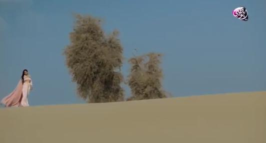 """""""دانات"""" موسم شعرى جديد مع """"نجاح المساعيد"""" على قناة أبوظبي"""
