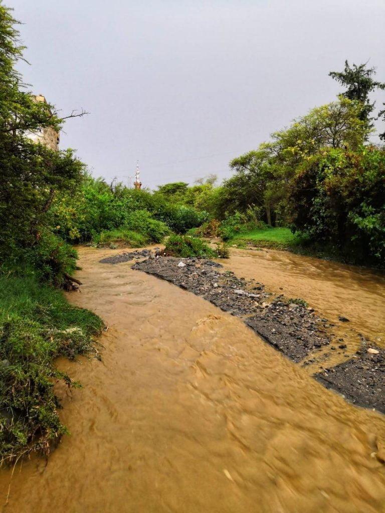 شلالات السيول تحفز أهالي بلجرشي بالباحة للخروج والتنزه في الغابات