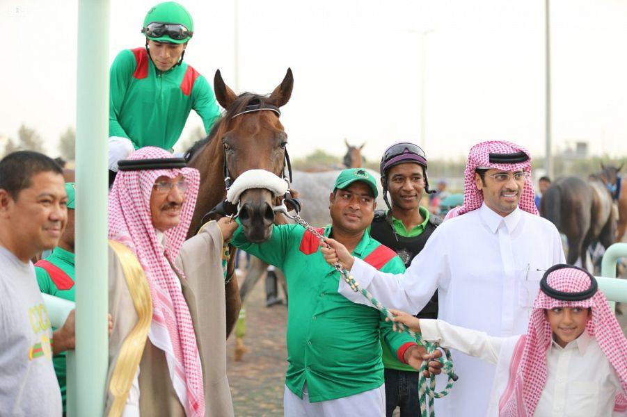 نادي الفروسية يقيم حفل سباقه الثالث عشر ضمن موسم سباقات الخيل للمصيف بالطائف صحيفة المناطق السعوديةصحيفة المناطق السعودية