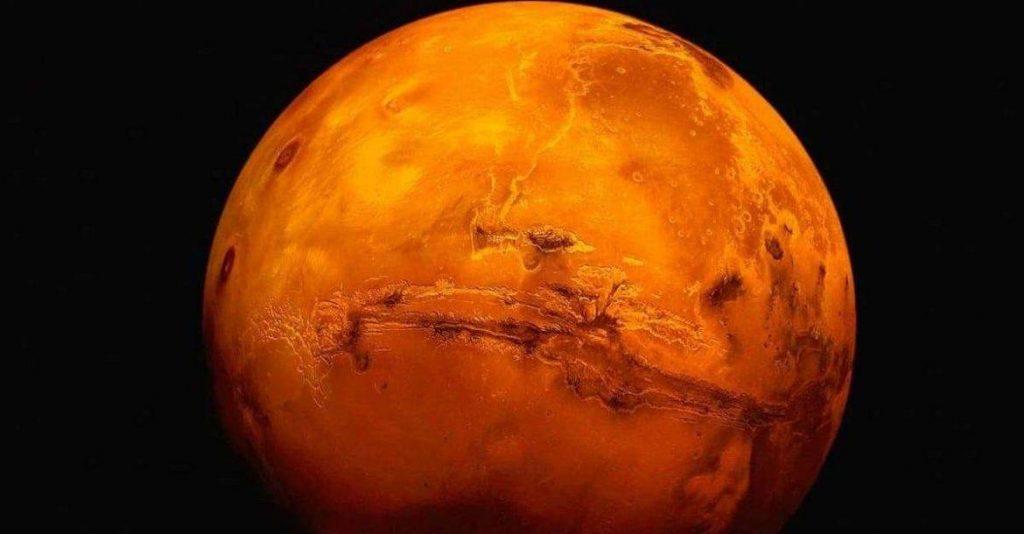 الإمارات ترسل بذور النخيل إلى المريخ (صور)