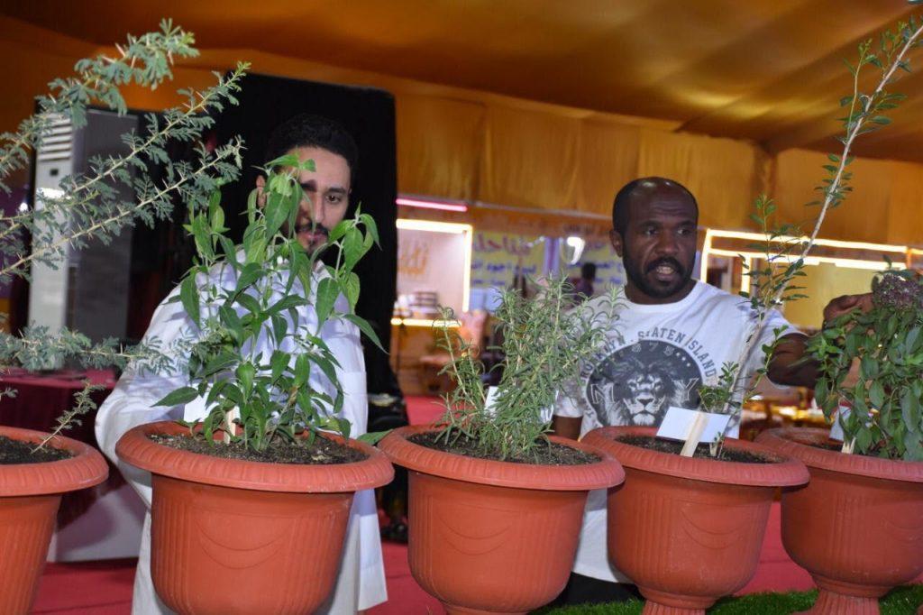 جمعية النحالين التعاونية بالباحة توزع 15 ألف شتلة نحلية مجانا خلال مهرجان العسل الدولي الثاني عشر