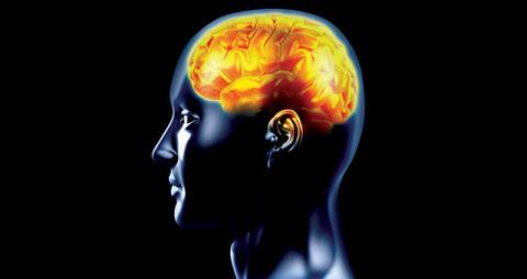 حدقة العين تكشف احتمالات الإصابة ب«ألزهايمر»