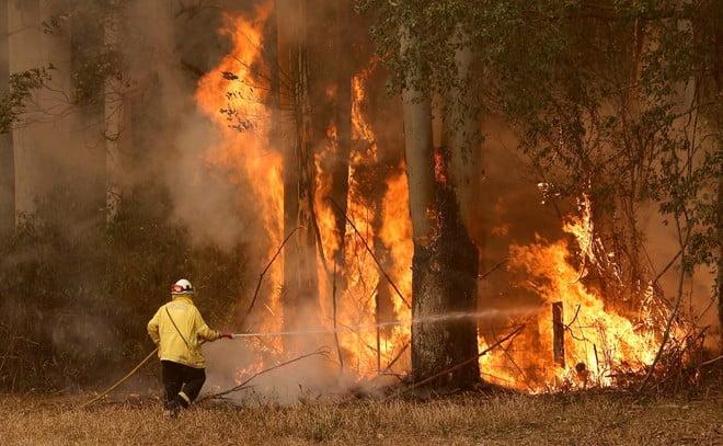 خبراء: حرائق الغابات في أستراليا ستزداد سوءا… وعلينا التأقلم معها
