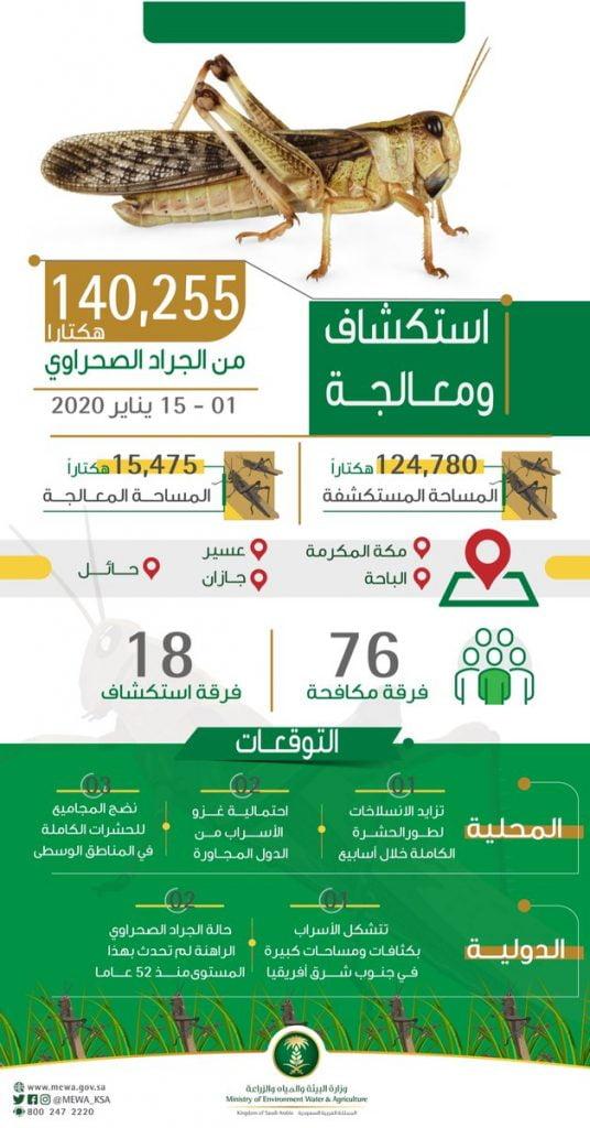 """""""البيئة"""" تستكشف وتكافح الجراد الصحراوي بمساحة 140,255 هكتاراً في 5 مناطق"""
