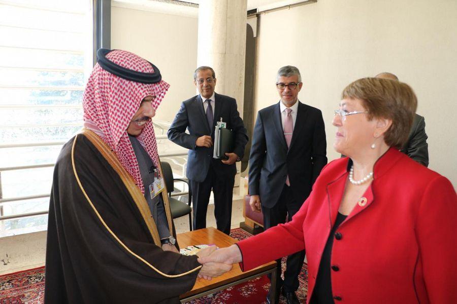 وزير الخارجية يلتقي المفوضة السامية لحقوق الإنسان