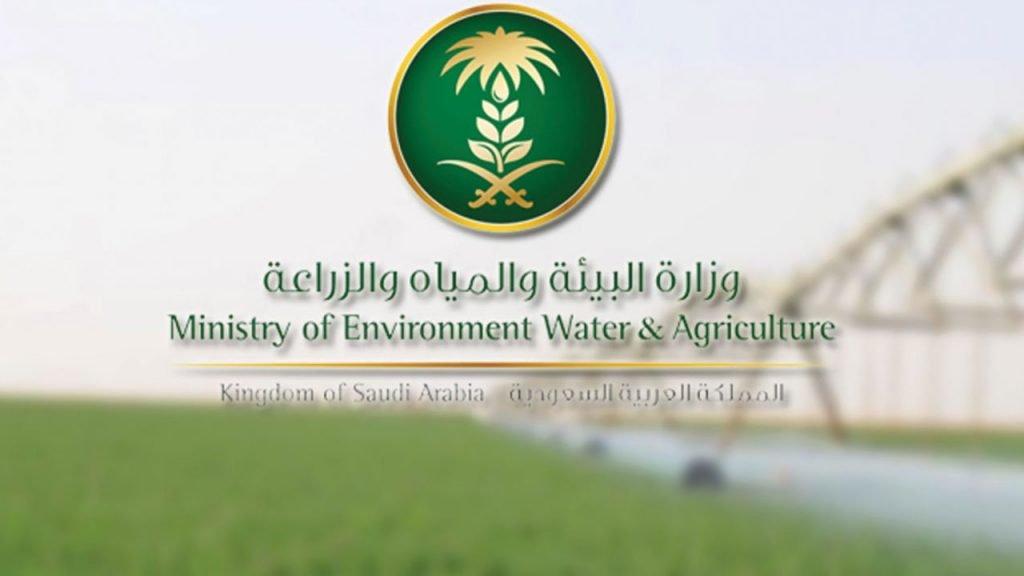 """""""البيئة"""": عمليات مكافحة الجراد الصحراوي مستمرة.. مع تراجعٍ ملحوظ للآفة بالمملكة"""