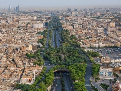"""""""الرياض الخضراء""""… مشروع بيئي طموح لجودة الحياة"""