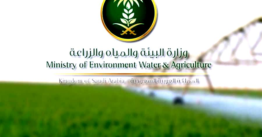 البيئة: خطط لتقديم قروض للمشاريع الزراعية بـ 3.5 مليار ريال