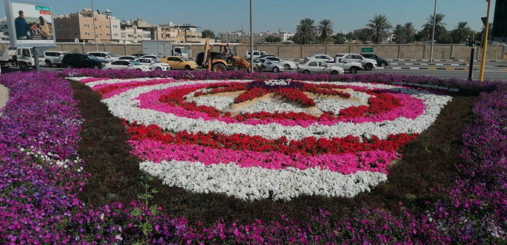 """أمانة الشرقية: زراعة أكثر من ثلاثة ملايين ونصف زهرة وشجرة شتوية في حاضرة الدمام ضمن مبادرة """"شرقية خضراء"""