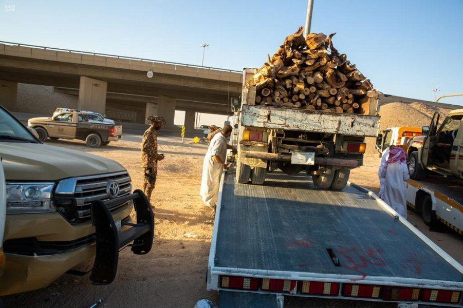 القوات الخاصة للأمن البيئي تضبط 2.3 طن من الحطب المحلي في مدينة الرياض