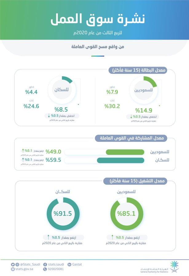 الهيئة العامة للإحصاء تُصدر نتائج نشرة سوق العمل للربع الثالث من عام 2020م