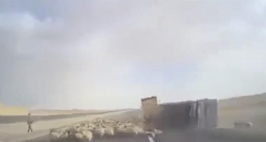 بالفيديو.. شاحنة تدهس قطيعاً من الأغنام وتنقلب على طريق سريع في الأردن