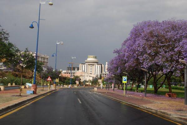 """""""المركز الوطني للأرصاد"""" : أمطار رعدية على منطقة عسير"""
