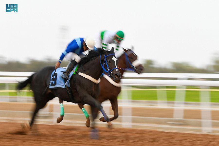 نادي سباقات الخيل للمصيف يقيم حفل سباقه الرابع على كأس إمارة مكة المكرمة وجائزة النادي