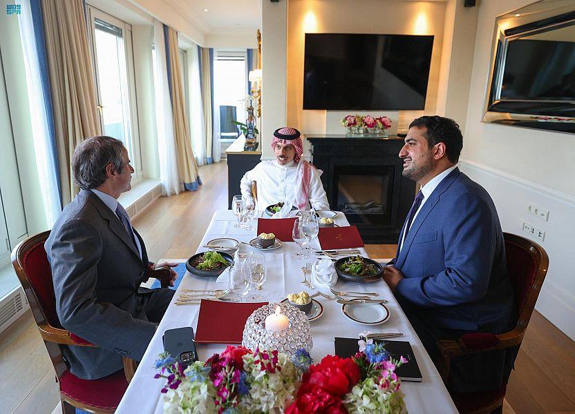 وزير الخارجية يلتقي مدير عام الوكالة الدولية للطاقة الذرية