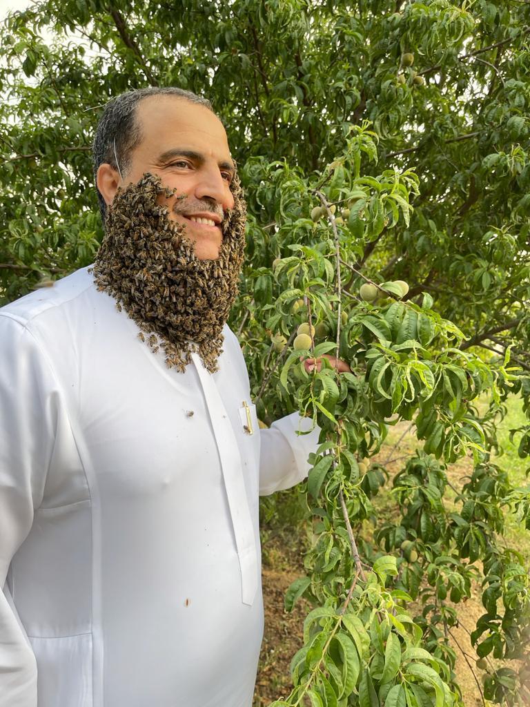 ٢٤٠ ألف نحلة تغطي وجه نحال الباحة