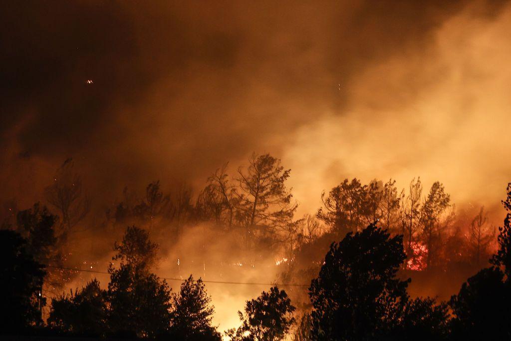 عشرات الجرحى في حريق غابات قرب منتجع سياحي تركي