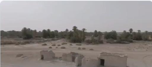 واحة يبرين.. ساحة إعداد انطلق منها الملك المؤسس لفتح الرياض (فيديو)